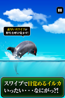 Screenshot 2: Can Dolphin Stand?